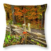 Country Road In Autumn Forest Throw Pillow