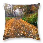 Country Roads Take Me Home Throw Pillow by Thomas R Fletcher