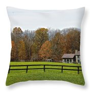 Country Side Home Throw Pillow