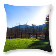 Country Sunshine Throw Pillow