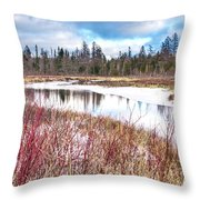 Country Winter 12 Throw Pillow