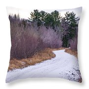 Country Winter 13 Throw Pillow