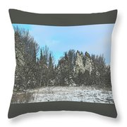 Country Winter 15 Throw Pillow