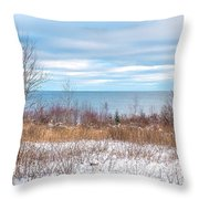Country Winter 16 Throw Pillow