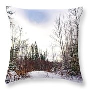 Country Winter 5 Throw Pillow