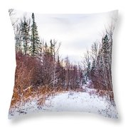 Country Winter 6 Throw Pillow