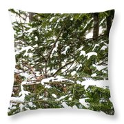 Country Winter 8 Throw Pillow