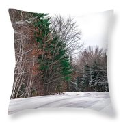 Country Winter 9 Throw Pillow