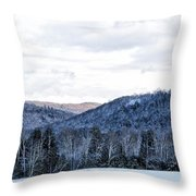 Country Winter Road Throw Pillow