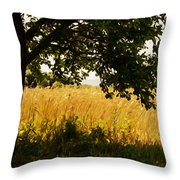 Countryside Of Italy  Throw Pillow