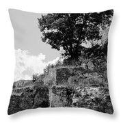 Countryside Of Italy Bnw 2 Throw Pillow