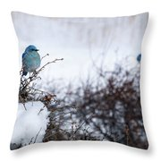 Couple Chilly Bluebirds Throw Pillow