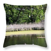 Couple In Row Boat Throw Pillow