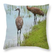 Couple Of Sandhills By Pond Throw Pillow