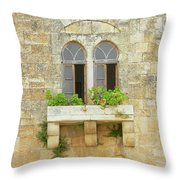 Coupled Windows Throw Pillow