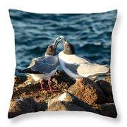Courtship Conversation Throw Pillow