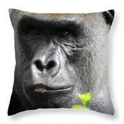 Cousin Number 12 Throw Pillow
