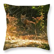 Cover Shot Throw Pillow