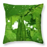 Covered Babies Throw Pillow