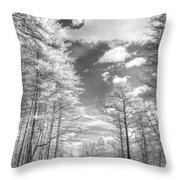 Covered Bridge Dupont North Carolina Throw Pillow