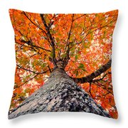 Covered In Fall Throw Pillow