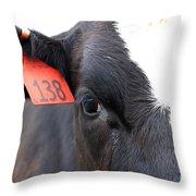 Cow 138 Throw Pillow