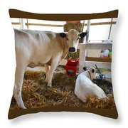 Cow And Little Calf Throw Pillow
