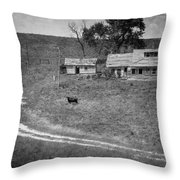 Cow At The Homestead Throw Pillow by Mary Lee Dereske