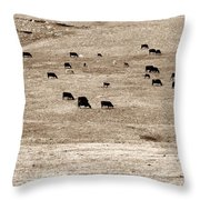Cow Droppings Throw Pillow