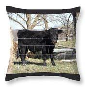 Cow Eating  Throw Pillow