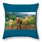Cow Gazing  Throw Pillow