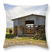 Cow In The Pasture Throw Pillow