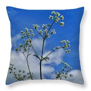 Cow Parsley Blossoms Throw Pillow