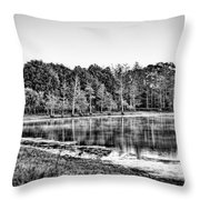 Cow Pen Lake Throw Pillow