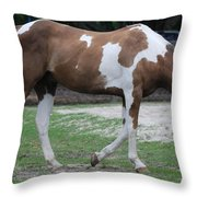 Cow Spotted Horse Throw Pillow