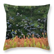 Cowbirds In Flight Over Milo Fields In Shiloh National Military Park Throw Pillow