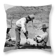 Cowboys: Branding Cattle Throw Pillow