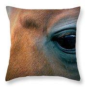 Cowgirls Heart Throw Pillow