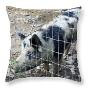 Cowpig On The Farm Throw Pillow