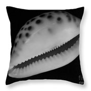 Cowry Shell In Black And White Throw Pillow