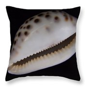 Cowry Shell Throw Pillow