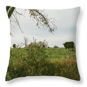 Cows And Farm In Michigan  Throw Pillow