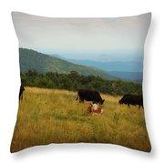 Cows At Doughton Park Throw Pillow