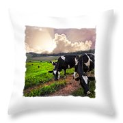 Cows At Sunset Bordered Throw Pillow