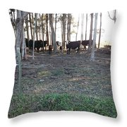 Cows In The Woods Throw Pillow