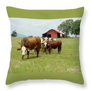 Cows8939 Throw Pillow