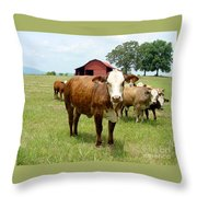 Cows8944 Throw Pillow