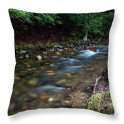 Coxing Kill On Earth Day 2017 I Throw Pillow