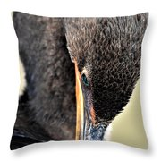Coy Cormorant Throw Pillow