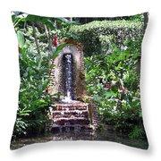 Coyaba Garden Ornamental Fountain Throw Pillow